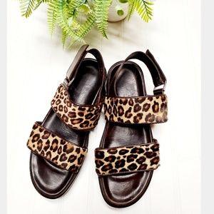 🎉Donald J. Pliner Fredi Leopard Velcro Sandal🎉